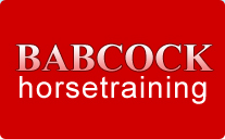 Babcock horse training